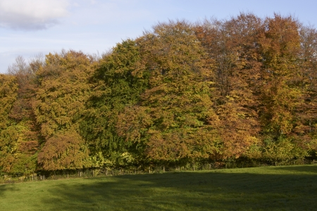 Autumn in the Cotswolds, Gloucestershire, England  Stock Photo - 17036063
