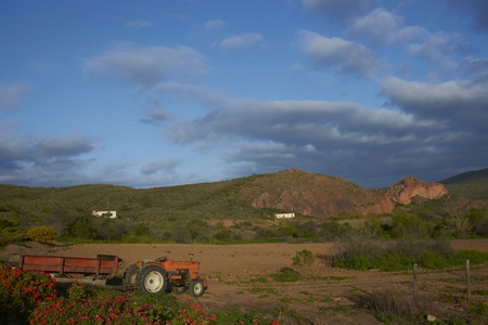 Old tractor on a farm in the Oudtshoorn region of the Western Cape in South Africa photo