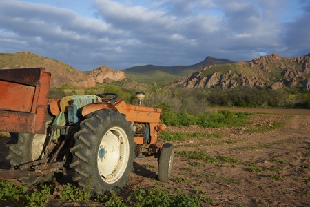 Old red tractor on a farm in the Oudtshoorn region of the Western Cape in South Africa Stock Photo - 13090727