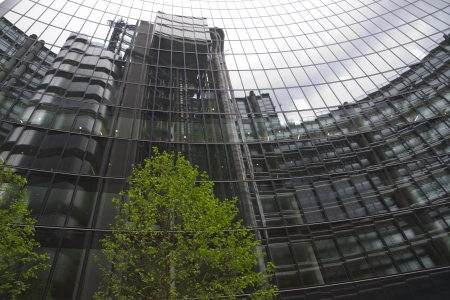 Green tree in front of a glass fronted office building in the City of London, England, United Kingdom Stock Photo - 13897405