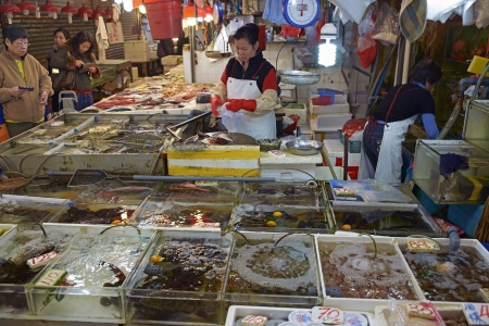 Hong Kong - January 27, 2012: Live fish for sale at a fish market in Kowloon, Hong Kong Stock Photo - 16994427