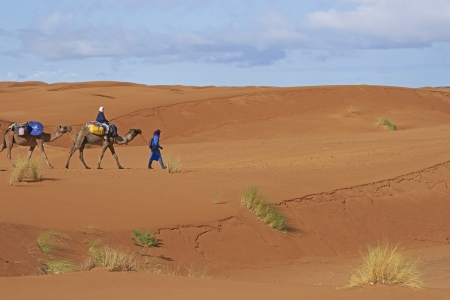 Sahara Desert, Morocco - October 20, 2012: Group of tourists on a camel safari led by a Tuareg Tribesman in the sand dunes of the Sahara Desert in Morocco, North Africa