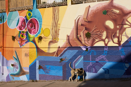 valparaiso: Valparaiso, Chile - May 6, 2014  Colourful murals decorating the streets of the world heritage city of Valparaiso in Chile