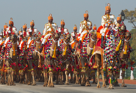 New Delhi, India - January 23, 2008  Soldiers of the Indian Border Security Force riding their camels down the Raj Path in preparation for the annual Republic Day Parade