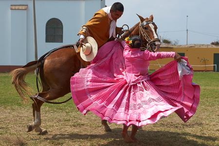 bailarin hombre: Trujillo, Per� - 01 de septiembre 2014: Se�ora en vestido rosa bailando una danza popular tradicional con un caballo Peruano de Paso en Trujillo, Per�