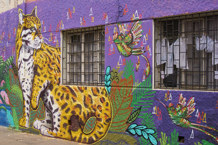 coastal city: Valparaiso, Chile - October 23, 2014: Colourful murals decorating buildings in the coastal city of Valparaiso in Chile.