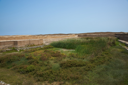 apogee: Overgrown water source within the remains of the historic city of Chan Chan near Trujillo in Peru. The city was the capital of the Chimu Kingdom which reached its apogee in the 15th Century. It is a UNESCO World Heritage Site. Stock Photo