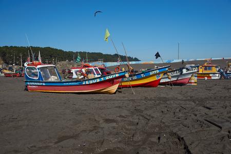 pescador: Curanipe Chile 22 de abril 2015: Pescadores eliminación de merluza merluza pacífica de las redes de pesca de los barcos que han sido recientemente sacado del mar en la playa, en el pueblo pesquero de Curanipe Chile.