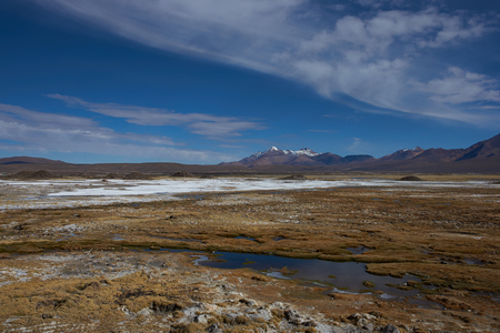 volcan: Wetland area, also known as a bofedal in Spanish, on the Altiplano of northern Chile in Lauca National Park  at the base of the In the background is the dormant Taapaca volcano 5860 m Stock Photo