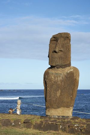 rapanui: Weathered Moai statue on the coast of Rapa Nui (Easter Island) in the capital Hanga Roa.