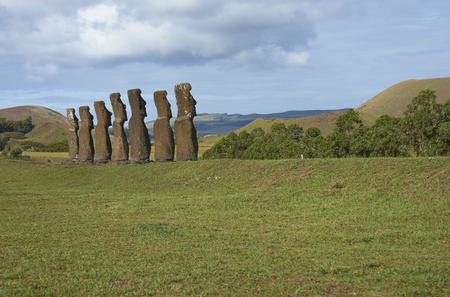 rapa: Ahu Kivi. Ancient Moai statues set amongst green fields and facing the sea on Rapa Nui (Easter Island)