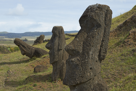 rano raraku: Rano Raraku. Abandoned and partially buried statues on the slopes of the extinct volcano which was the quarry from which the Moai statues of Rapa Nui (Easter Island) were carved.