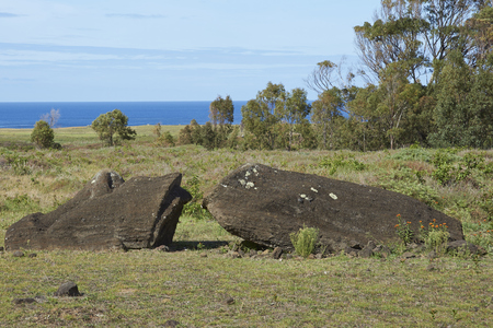 toppled: Rano Raraku. Abandoned and partially buried statue on the slopes of the extinct volcano which was the quarry from which the Moai statues of Rapa Nui (Easter Island) were carved. Stock Photo