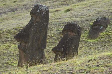 rapa nui: Rano Raraku. Abandoned and partially buried statues on the slopes of the extinct volcano which was the quarry from which the Moai statues of Rapa Nui (Easter Island) were carved.