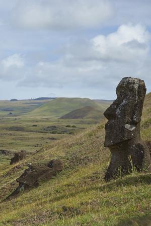 rapa nui: Rano Raraku. Abandonado y estatuas en las laderas del volcán extinto que fue la cantera de la que fueron tallados los Moais de Rapa Nui (Isla de Pascua) enterrada parcialmente.