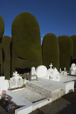 magallanes: PUNTA ARENAS, CHILE - AUGUST 27, 2016: Historic cemetery of Punta Arenas in the Magallanes Region of southern Chile
