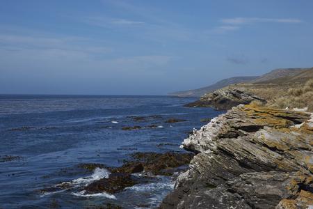 karkas: Rocky northern coast of Carcass Island in the Falkland Islands Stockfoto