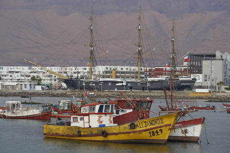 tied in: Iquique, Chile - August 28, 2017: Fishing boats tied up in the fishing harbour of Iquique in northern Chile.