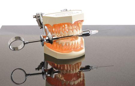 venganza: Modelo tipodonto dientes en una simulaci�n de la mand�bula sobre la venganza ampliamente temido anest�sico tiro.
