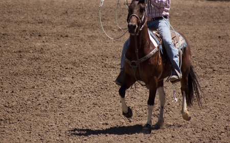 A cowbo on horse back in the middle of a dirt ranch or arena. photo