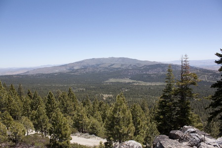 sawtooth national forest: A heavily forest range in the sierra nevadaas.