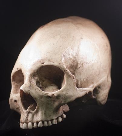 Human skull - bone head dead teeth spooky scary pirate isolated evil Stock Photo - 9895711