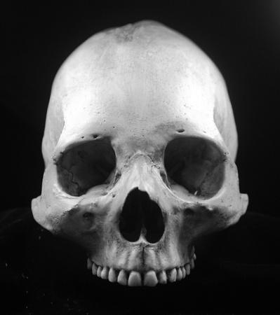 Human skull - bone head dead teeth spooky scary pirate isolated evil Stock Photo - 9895221