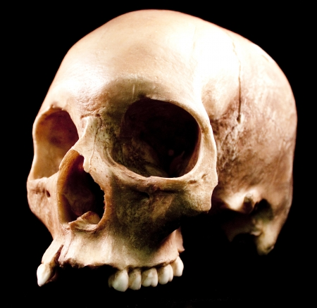 Human skull - bone head dead teeth spooky scary pirate isolated evil Stock Photo - 9895224