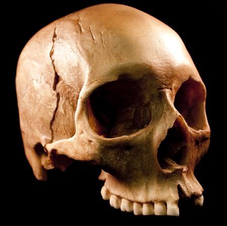 Human skull - bone head dead teeth spooky scary pirate isolated evil Stock Photo - 9895228