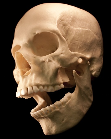 Human skull - bone head dead teeth spooky scary pirate isolated evil Stock Photo - 9895703