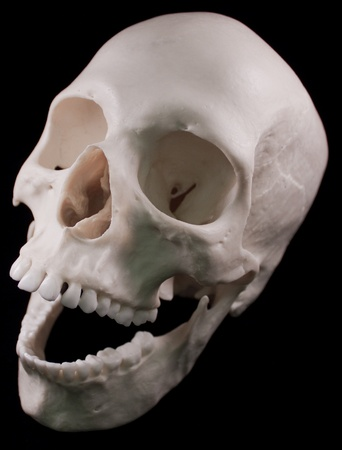 Human skull - bone head dead teeth spooky scary pirate isolated evil Stock Photo - 9895215