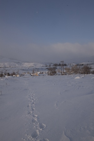 A snowy winter morning plain - countryside snow outdoor scene freezing photo