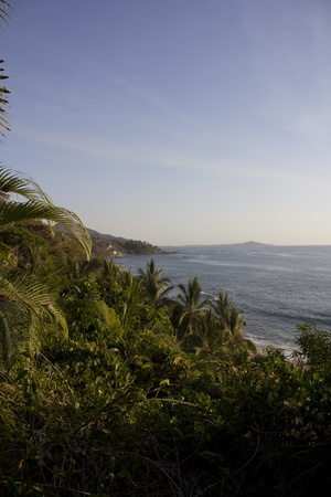 ocean view from the top of the jungle