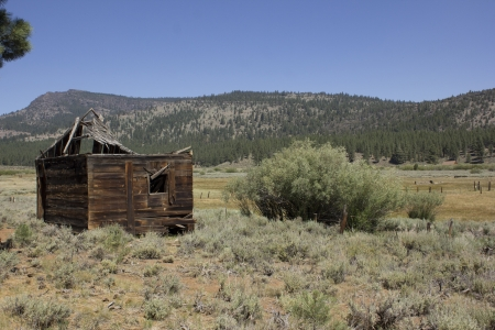 an abandoned western barn in the high sierras Stock Photo - 14570009