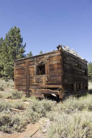 an abandoned western barn in the high sierras Stock Photo - 14569974