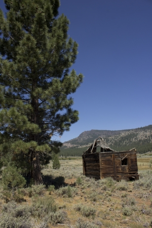 an abandoned western barn in the high sierras Stock Photo - 14569966