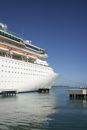 A very large cruise ship in a tropical location. photo