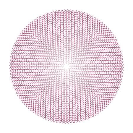 guilloche vector elements on a white background Reklamní fotografie