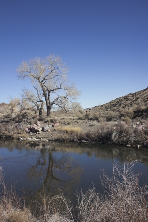 The Truckee river just past Reno towards Fernley in the winter 版權商用圖片 - 18144389