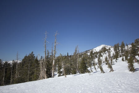 The Sierra Nevadas in the winter at Castle peak. 版權商用圖片 - 18144387