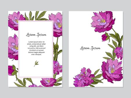 Set of cards with peony flowers. Wedding ornament concept.  イラスト・ベクター素材