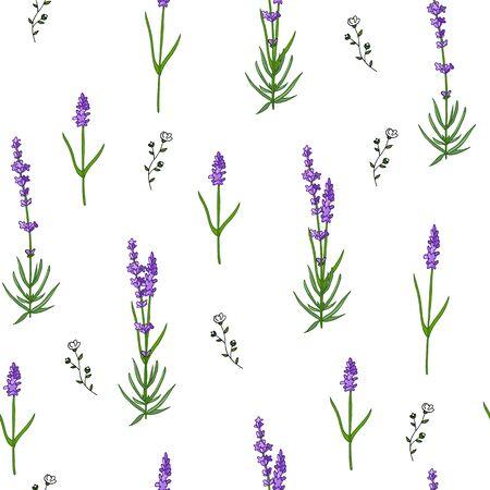 Nahtloses Lavendelmuster lokalisiert auf weißem Hintergrund mit wilden Blumen. Gekritzel handgezeichnete Blumen.