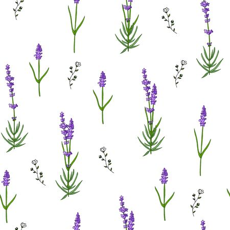 Seamless lavender pattern isolated on white background with wild flowers. Doodle hand drawn flowers. Banque d'images - 131444831