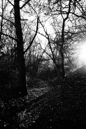 Sun rise in black and white Stock Photo