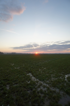 Zonsondergang in de Hollandse polder