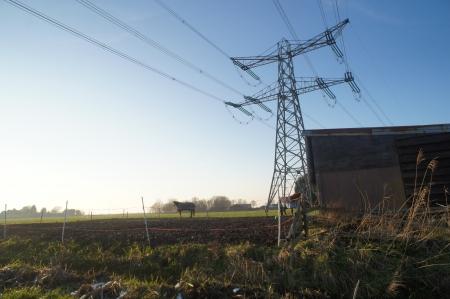 polder: Paardenstal in de polder