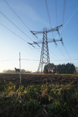 Electriciteitsmast en paardenstal