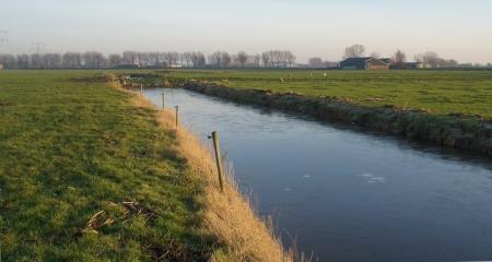 Sloot in de polder