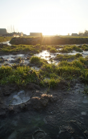 Bevroren grond