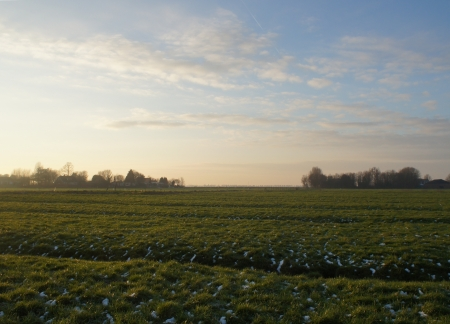 Ruysdael Stock Photo